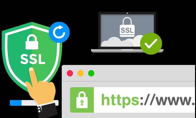 Certificado SSL - Softeco WEB - Agência de Marketing Digital