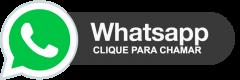 Chama no Whatsapp - Softeco WEB - Agência de Marketing Digital